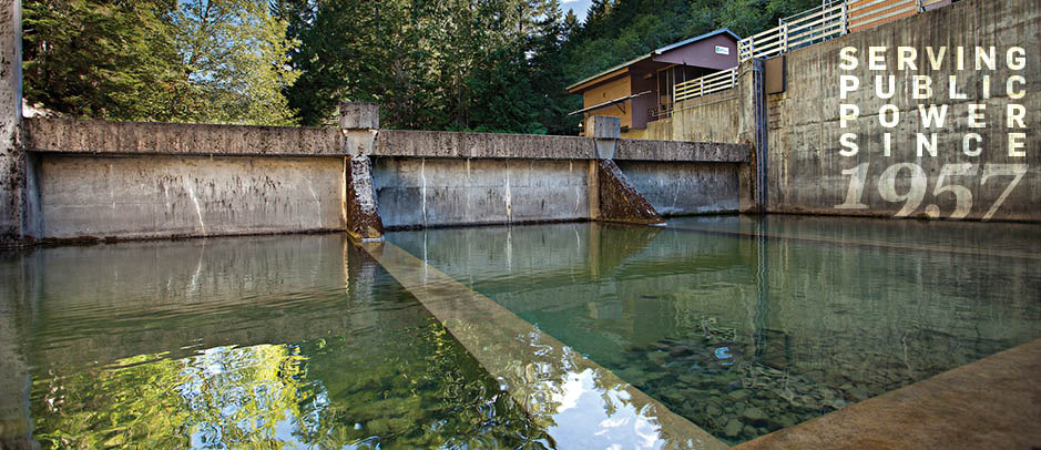 Packwood Lake Hydroelectric Project