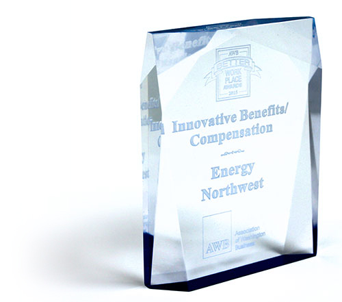 Innovative Benefits / Compensation Award
